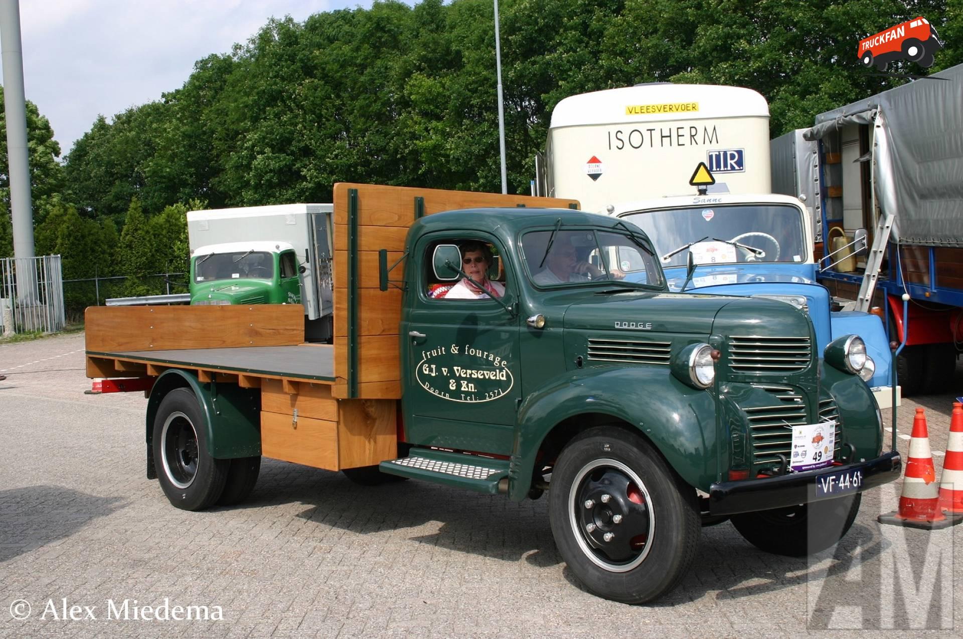 Dodge onbekend/overig
