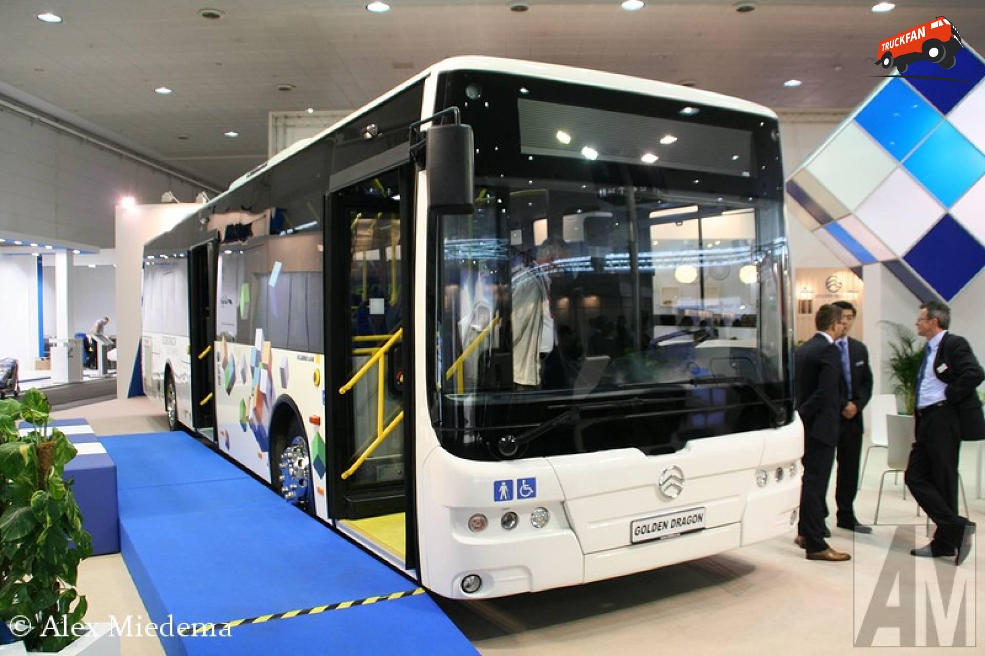 Golden dragon bus lines stanabol british dragon opinie