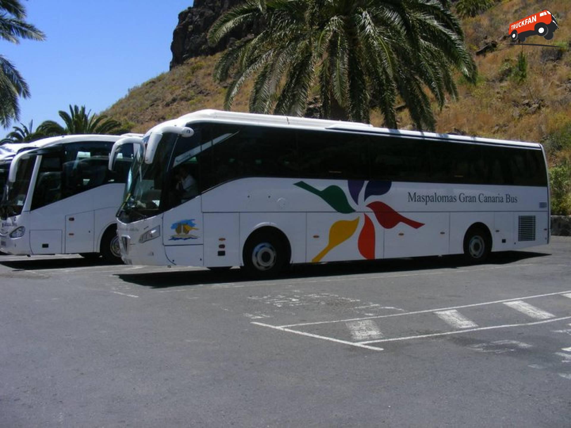 Noge bus